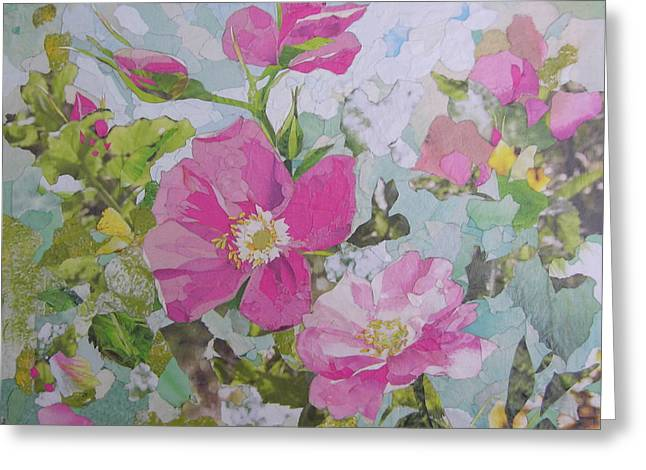Shrub Roses Greeting Card