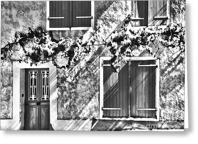 Shutter And Vine France 2011 Greeting Card by Jack Torcello