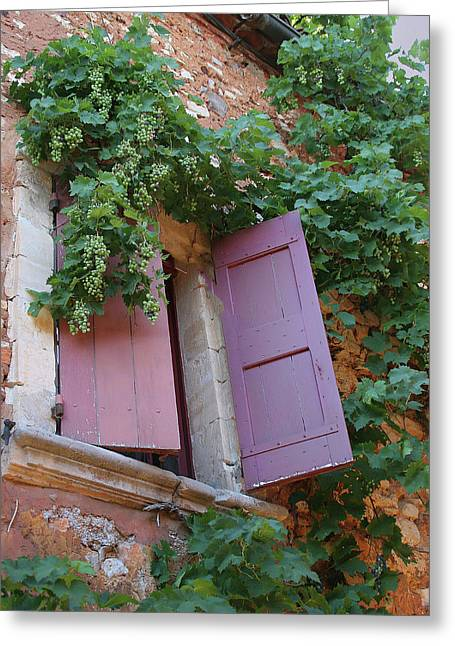 Shutters And Grapevines Greeting Card by Sandra Anderson