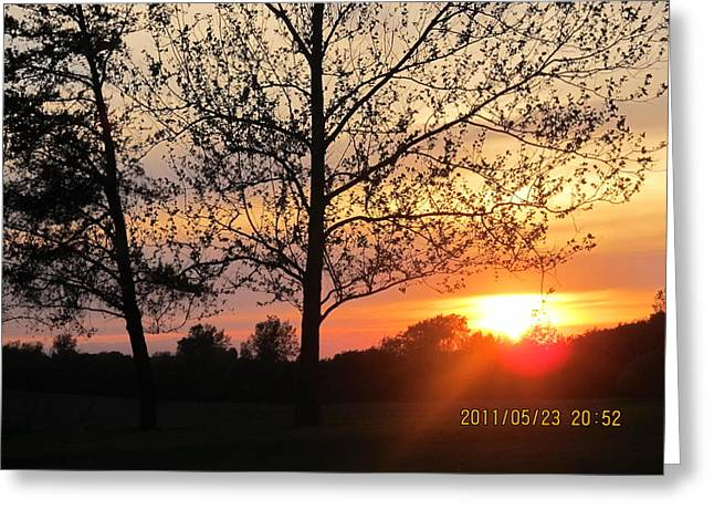 Greeting Card featuring the photograph Shy Sunset by Tina M Wenger