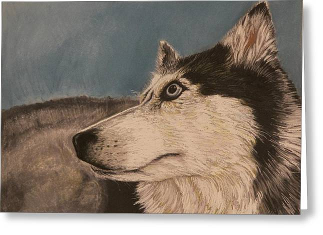 Greeting Card featuring the drawing Siberian Husky by Robert Decker