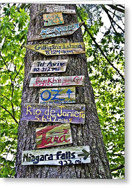 Signs On A Tree Greeting Card