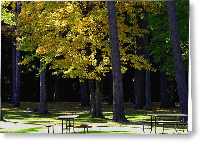 Silence In The Park Greeting Card by Ms Judi