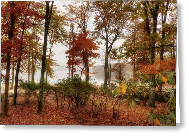 Silent Autumn Greeting Card