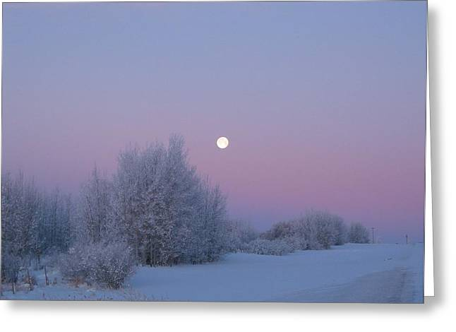 Silent Morning Greeting Card