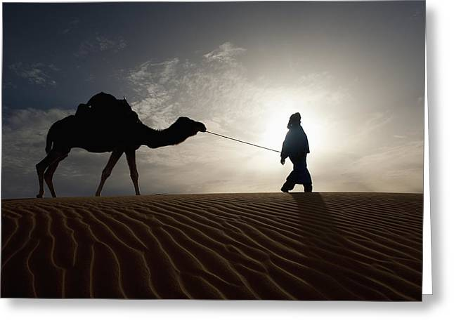 Silhouette Of Berber Leading Camel Greeting Card by Axiom Photographic