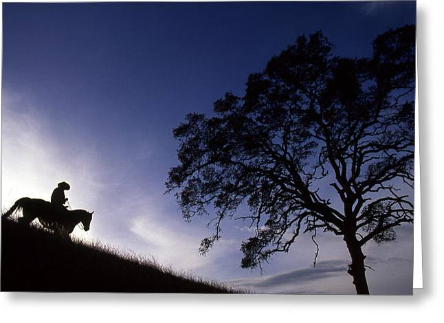 Silhouette Of Cowboy Greeting Card