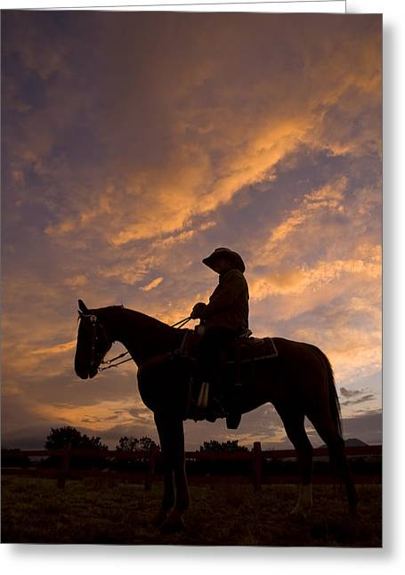 Silhouetted Cowboy Actor On Horseback Greeting Card by Ralph Lee Hopkins