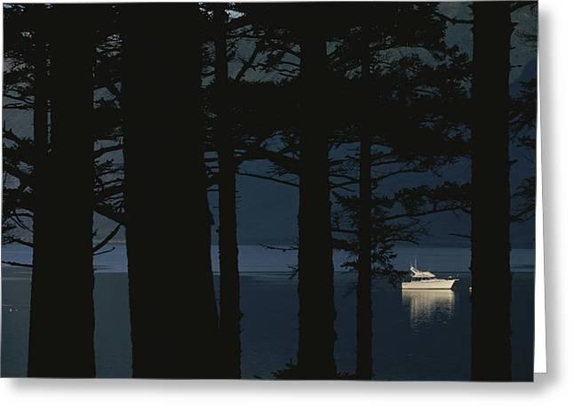 Silhouetted Evergreen Trees Rim Alpine Greeting Card by Karen Kasmauski