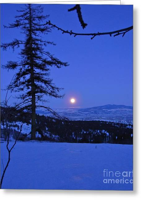 Silver-blue Moon Greeting Card