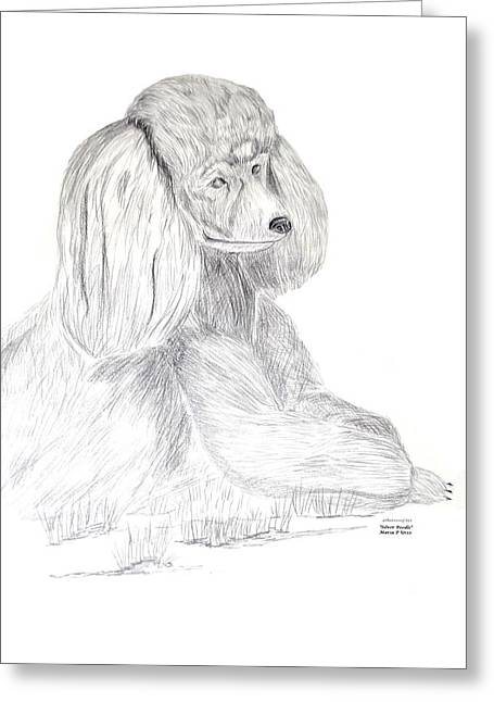 Greeting Card featuring the drawing Silver Poodle by Maria Urso