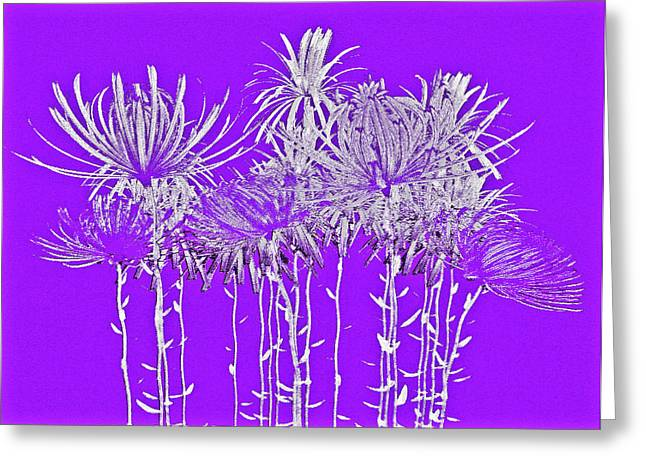 Silver Stems On Purple Greeting Card by James Mancini Heath