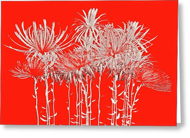 Silver Stems On Red Greeting Card by James Mancini Heath