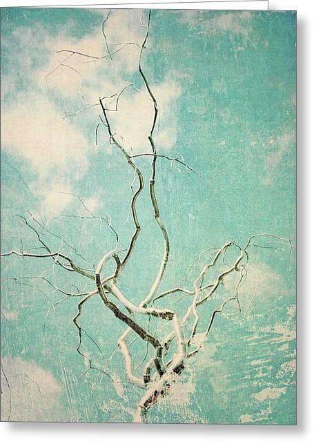 Silver Twist Greeting Card by Sharon Kalstek-Coty