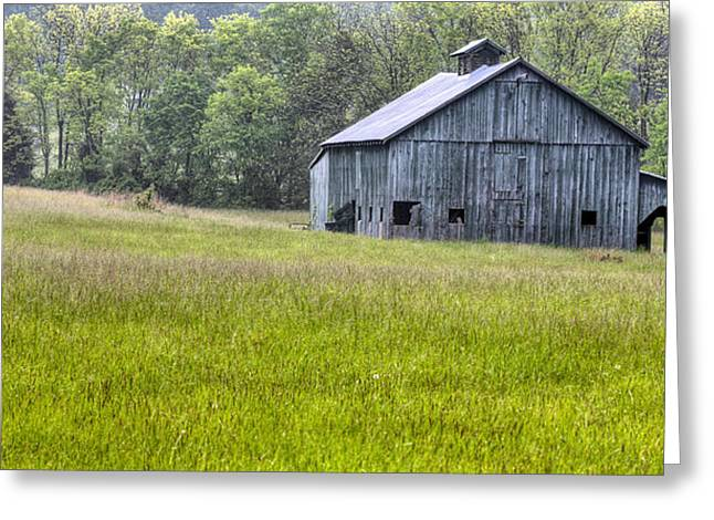 Simple Green Greeting Card by JC Findley