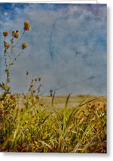 Singing In The Grass Greeting Card by Empty Wall
