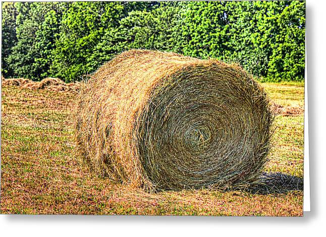 Single Bale Greeting Card by Barry Jones