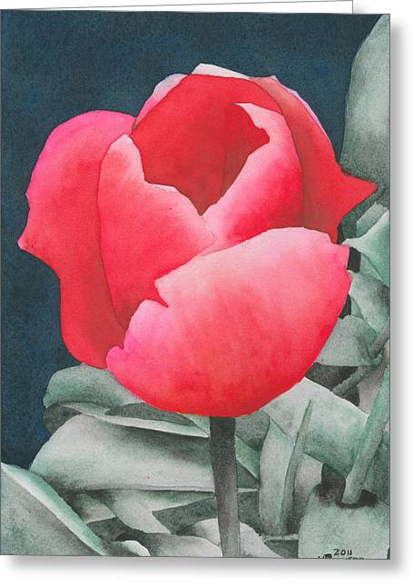 Single Tulip Greeting Card