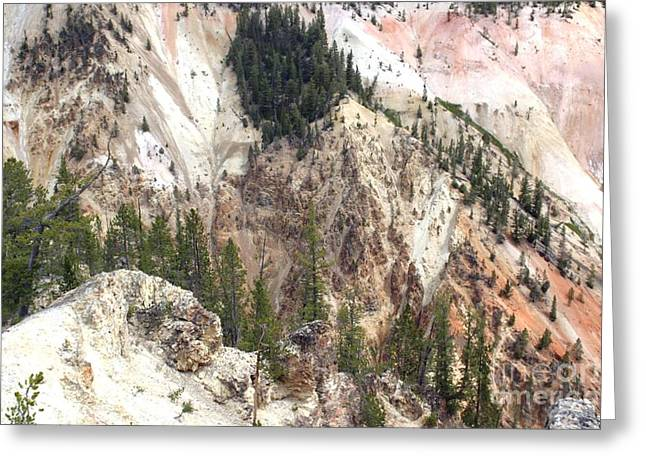 Sit For A Spell At Grand Canyon In Yellowstone Greeting Card by Living Color Photography Lorraine Lynch