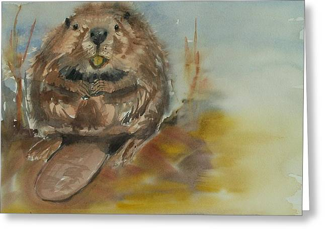 Sitting Beaver Greeting Card by Barbara McGeachen