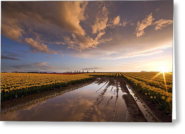 Skagit Sunset Reflected Greeting Card