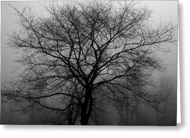 Skeletons In The Fog Greeting Card