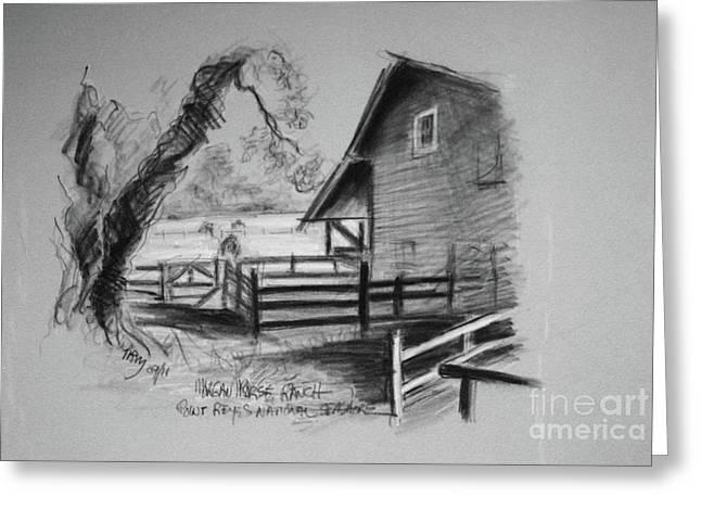 Sketch Of Morgan Horse Ranch Barn  At Prns Greeting Card by Paul Miller