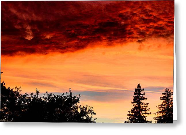 Skies On Fire Greeting Card by Karen M Scovill