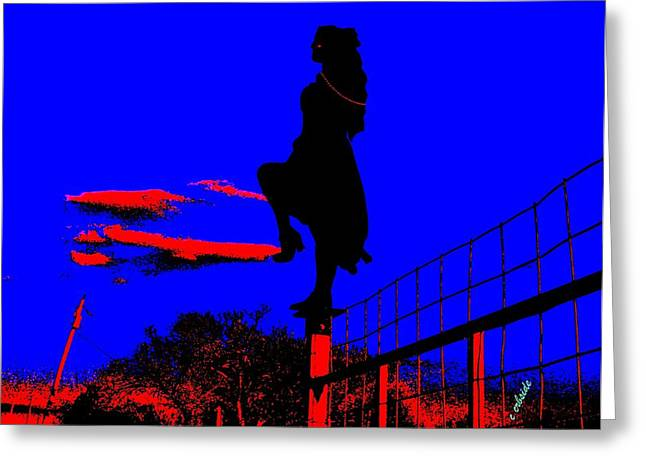 Sky Dancer Greeting Card by Chris Berry
