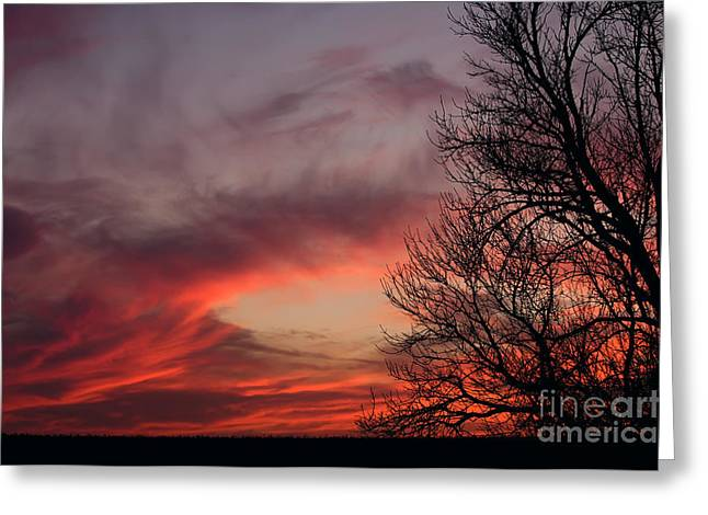 Sky On Fire Greeting Card by Art Whitton