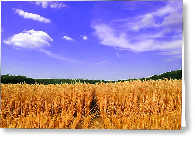 Sky Over The Field 3 Ae  Greeting Card by Lyle Crump