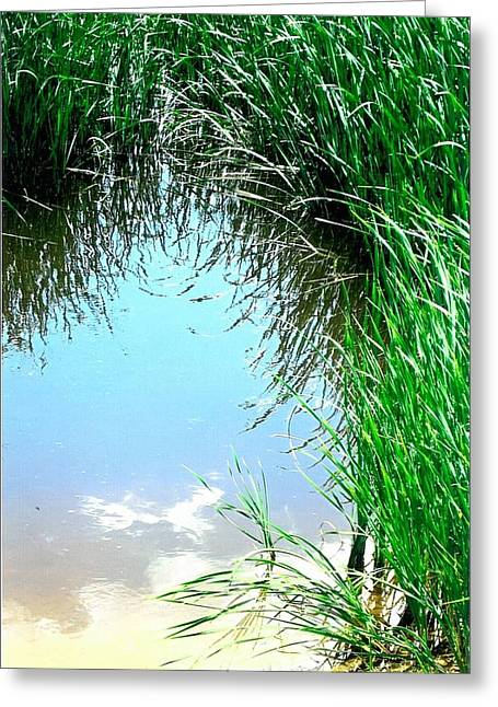 Sky Reflected Greeting Card by Suzanne Fenster