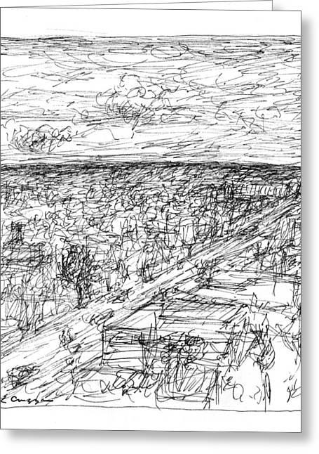 Skyline Sketch Greeting Card by Elizabeth Carrozza