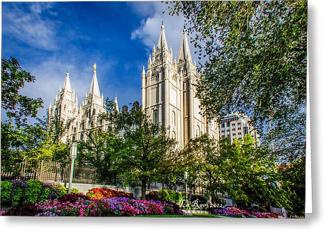 Slc Nw View Greeting Card by La Rae  Roberts