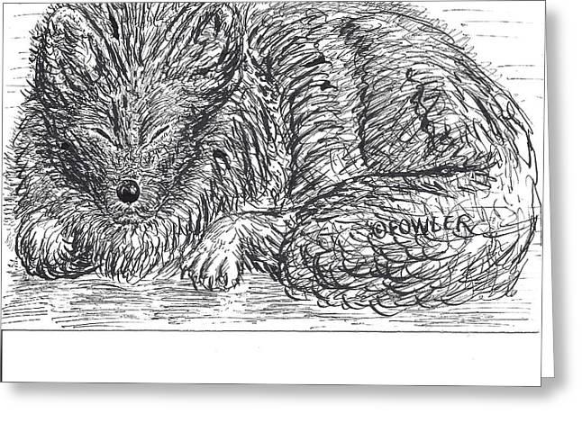 Sleepy Fox Greeting Card by John A Fowler