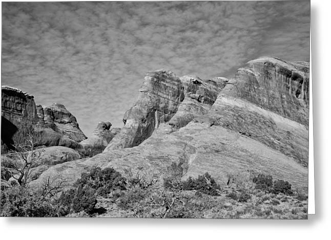 Slick Rocks Greeting Card by Wilma  Birdwell