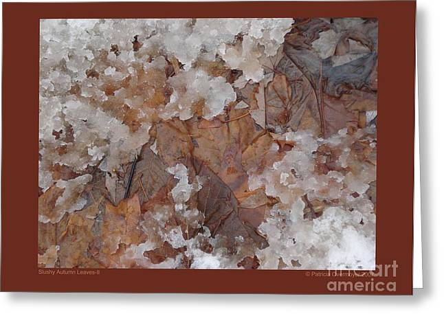 Greeting Card featuring the photograph Slushy Autumn Leaves-ii by Patricia Overmoyer