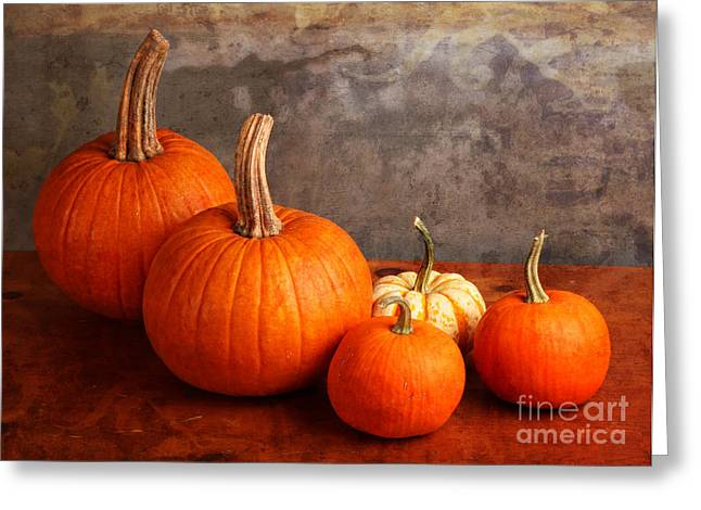 Small Decorative Pumpkins Greeting Card by Verena Matthew