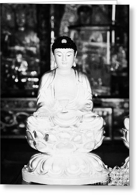 Small Golden Buddha Statue In Monastery Of Ten Thousand Buddhas Sha Tin New Territories Hong Kong Greeting Card