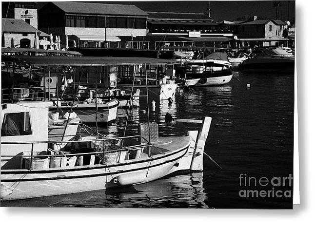 Small Local Greek Cypriot Fishing Boats In Kato Paphos Harbour Republic Of Cyprus Europe Greeting Card by Joe Fox