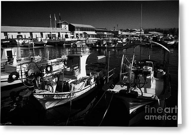 Small Local Greek Cypriot Fishing Boats With Expensive Pleasure Craft In Kato Paphos Harbour Greeting Card by Joe Fox