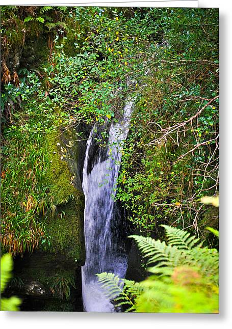Small Waterfall Greeting Card by Erica McLellan