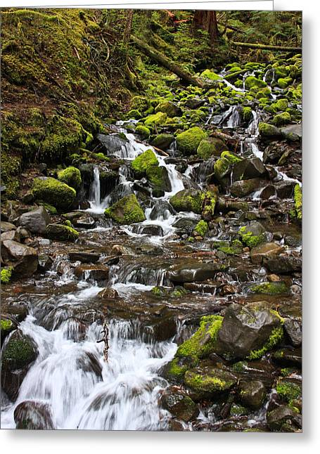 Small Waterfall Greeting Card by Mark Alder