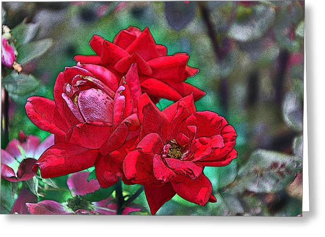 Smell The Roses Greeting Card by Paul Mashburn