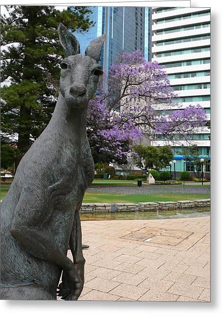 Smith Kangaroo Greeting Card by Gregory Smith
