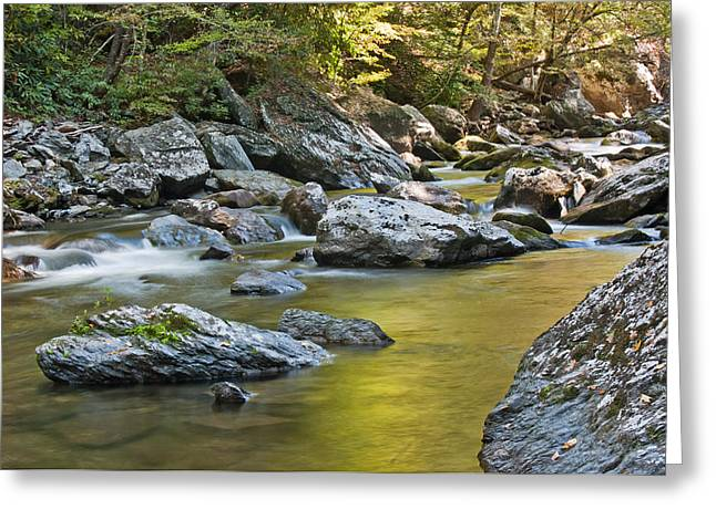 Smoky Mountain Streams II Greeting Card