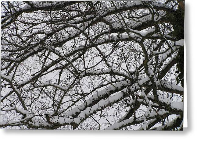 Snow Against A Grey Sky Greeting Card