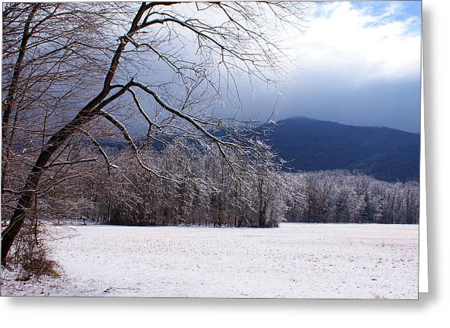 Greeting Card featuring the photograph Snow And Ice by Paul Mashburn