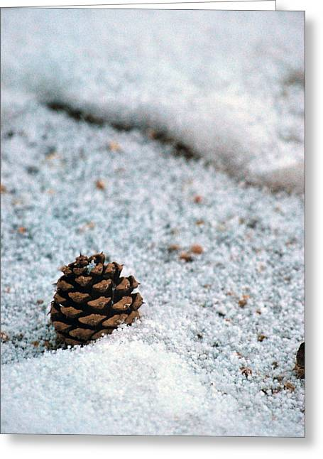 Snow Cone Greeting Card