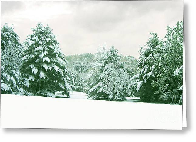 Greeting Card featuring the photograph Snow Covered Countryside by Michael Waters